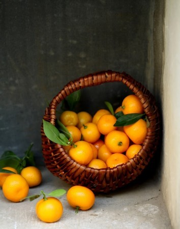 http://www.darter.in/wp-content/uploads/2015/04/Kumquats-e1441204152555-354x450.jpg