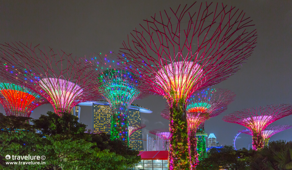 Supertree-Grove-Singapore